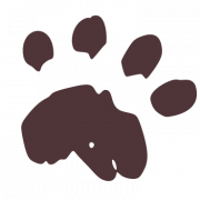 rockford animal hospital
